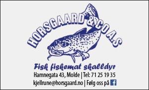 Horsgaard og co. AS