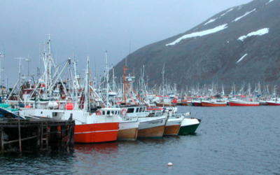 Nye regler for kystflåtens lasterom