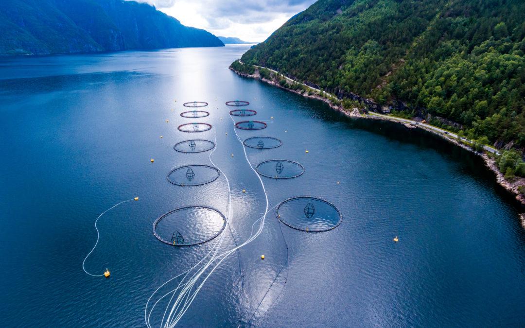 Planlegging og ressursutnytting i kystnære sjøområder.