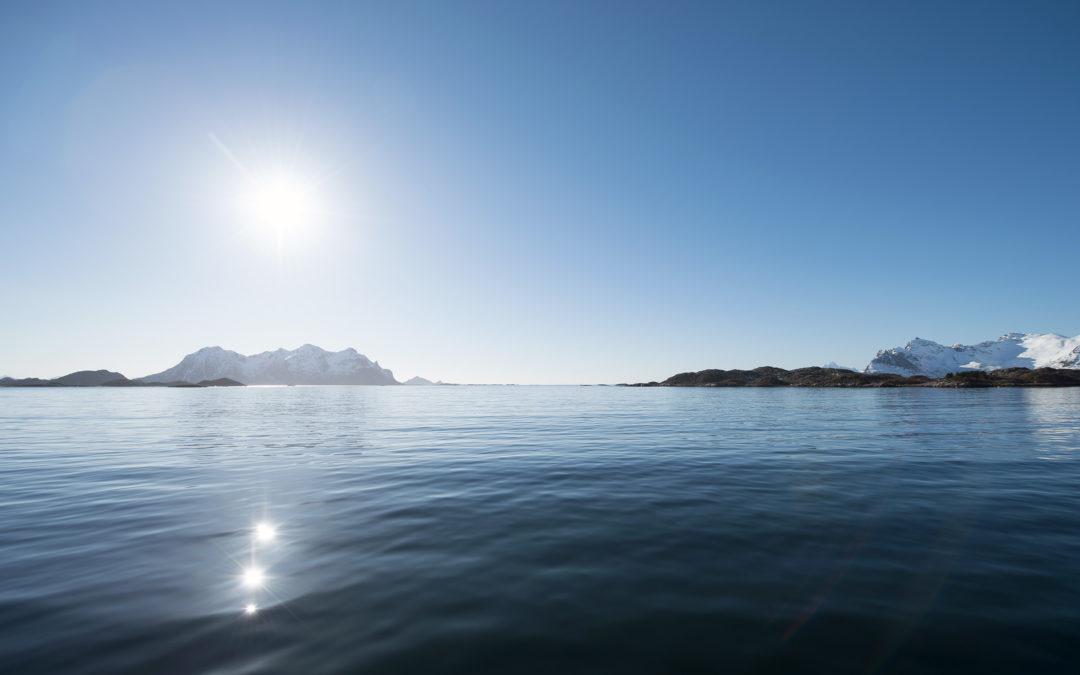 Sjømatrådets markedsgrupper har fått ny sammensetning