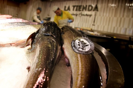 Bilde av torsk