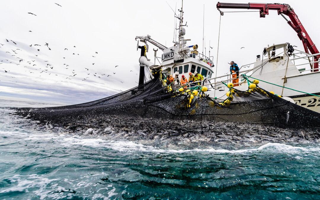 Tidenes beste mars ga solid kvartalfor sjømateksporten